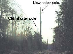 The new, taller poles need more right-of-way clearance than the shorter poles